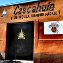 Tequila Cascahuín: Making Mexico's famed firewater the traditional way